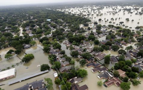 A Plethora of Hurricanes: The Aftermath of These Disasters