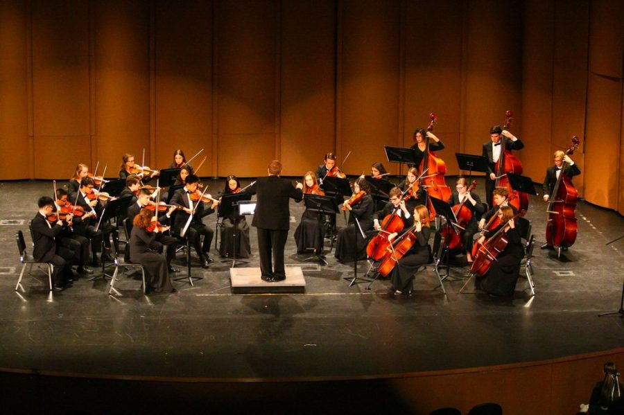 Getting to Know WHS's String Instrumentalists